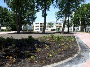 aanleg-tuin-amsterdam