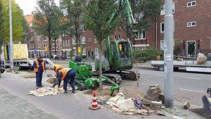 bomen-rooien-amsterdam-1
